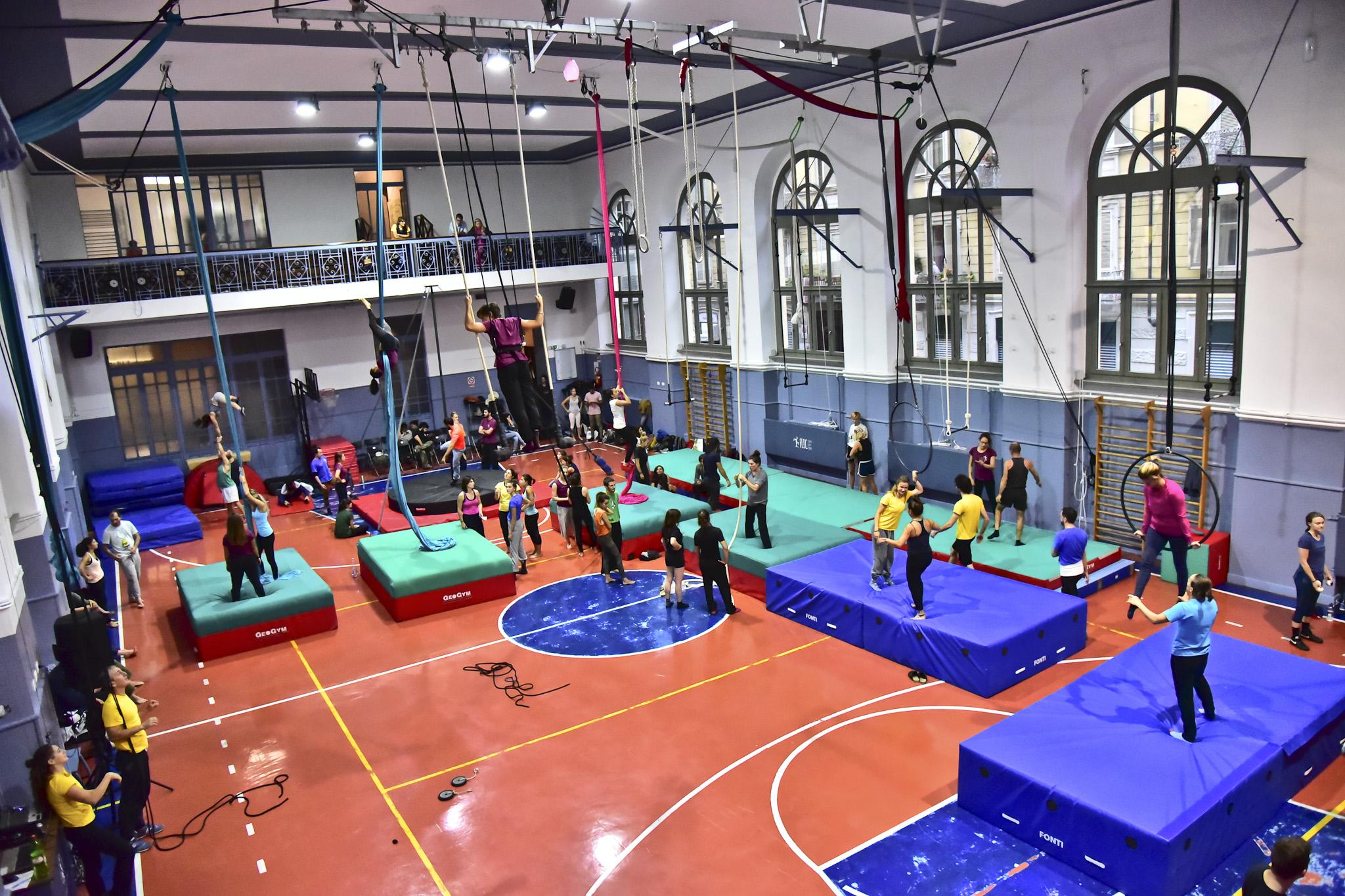 3^ Festa dell'Acrobatica